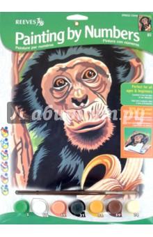 "Набор для раскрашивания ""Шимпанзе"" (PPNJ52)"