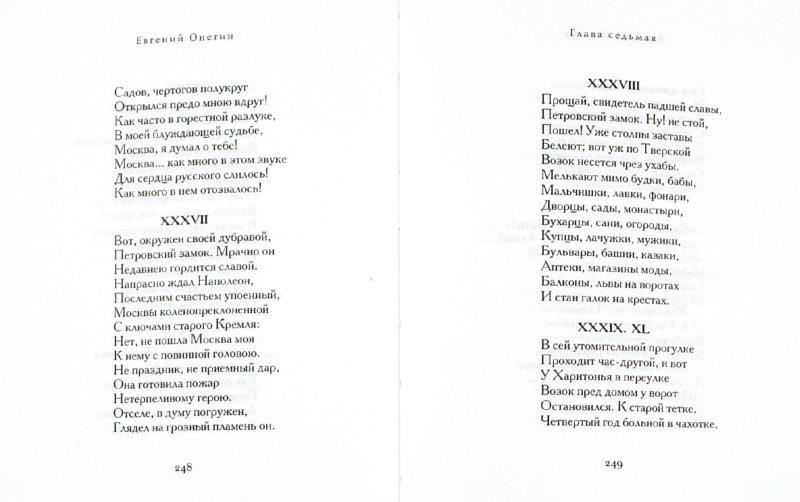 Иллюстрация 1 из 5 для Евгений Онегин - Александр Пушкин | Лабиринт - книги. Источник: Лабиринт