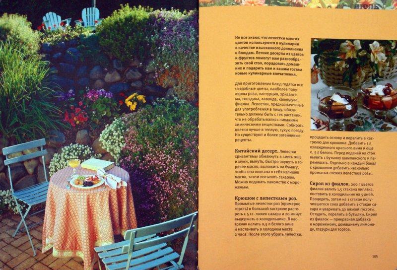 Иллюстрация 1 из 15 для Мои любимые цветы. Настольная книга практичного цветовода | Лабиринт - книги. Источник: Лабиринт