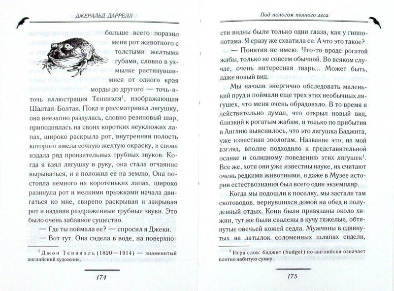 Иллюстрация 1 из 22 для Под пологом пьяного леса - Джеральд Даррелл | Лабиринт - книги. Источник: Лабиринт