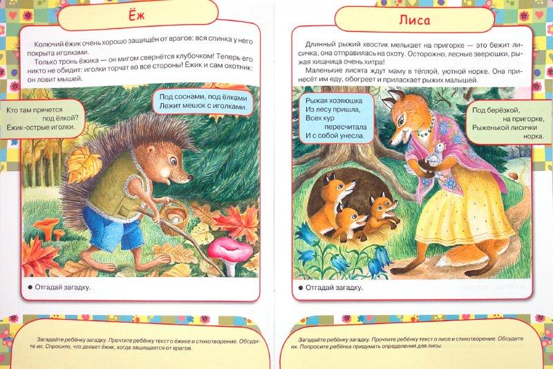 Иллюстрация 1 из 13 для Дружок. Дошкольная подготовка. 3 года. Кто в лесу живет - Софья Буланова   Лабиринт - книги. Источник: Лабиринт