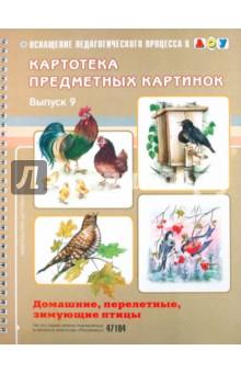 Картотека предметных картинок.  Домашние, перелетные, зимующие птицы.