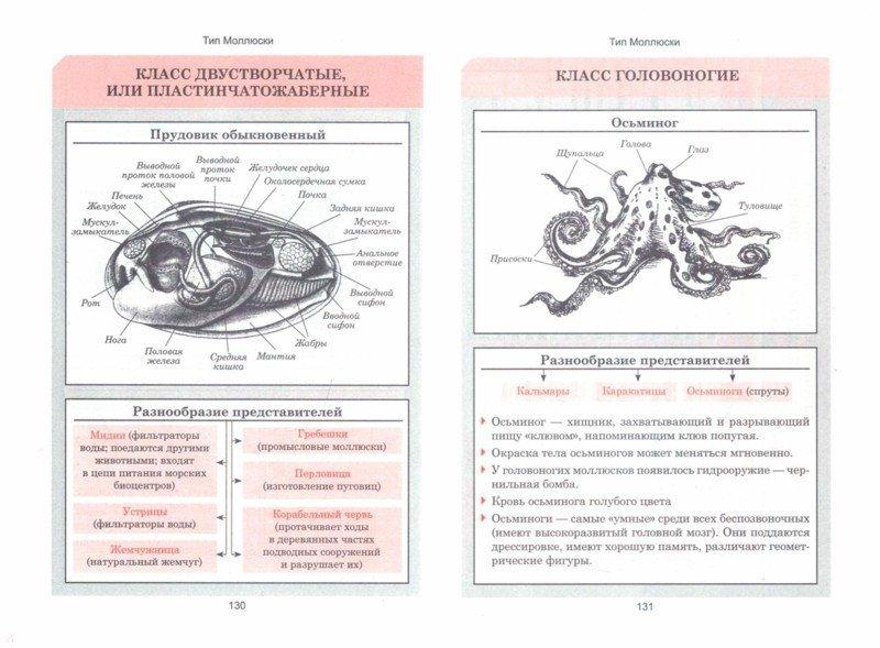 биология. весь школьный курс в