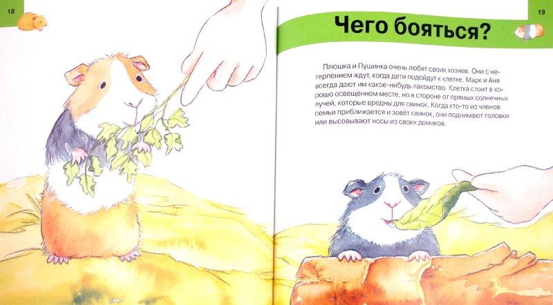 Иллюстрация 1 из 11 для Твоя морская свинка. Уход за домашним любимцем - Алехандро Альгарра | Лабиринт - книги. Источник: Лабиринт