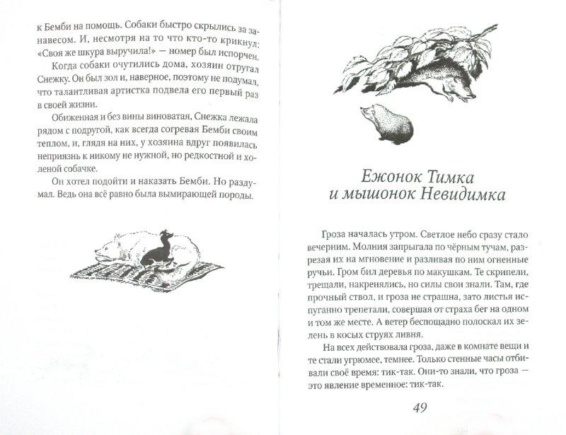 Иллюстрация 1 из 5 для Котька - Наталия Дурова | Лабиринт - книги. Источник: Лабиринт
