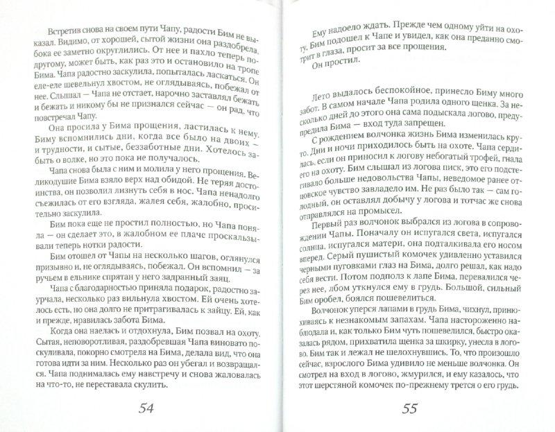 Иллюстрация 1 из 11 для Стая - Лев Коконин | Лабиринт - книги. Источник: Лабиринт