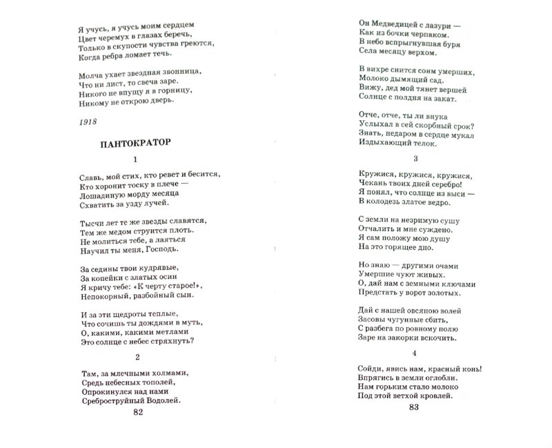 Иллюстрация 1 из 6 для Стихотворения. Поэмы - Сергей Есенин | Лабиринт - книги. Источник: Лабиринт