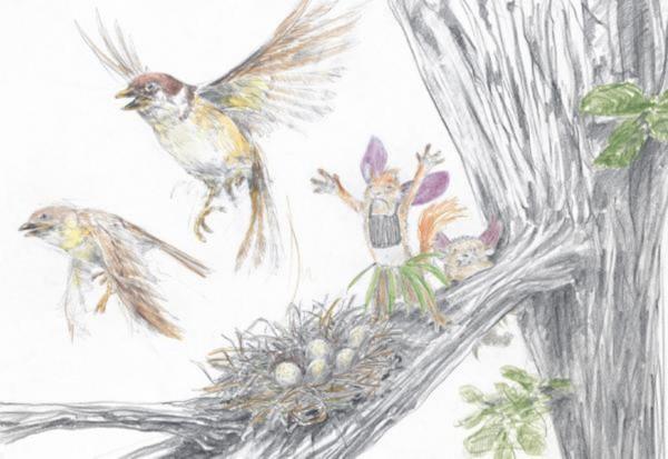 Иллюстрация 1 из 41 для Мистер Белка знает путь к счастью - Себастьян Мешенмозер   Лабиринт - книги. Источник: Лабиринт