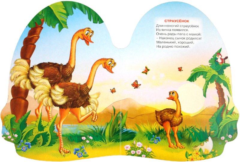 Иллюстрация 1 из 10 для Кто родился из яйца? - Наталья Мигунова | Лабиринт - книги. Источник: Лабиринт