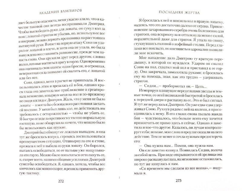 Иллюстрация 1 из 18 для Академия вампиров. Книга 6. Последняя жертва - Райчел Мид | Лабиринт - книги. Источник: Лабиринт