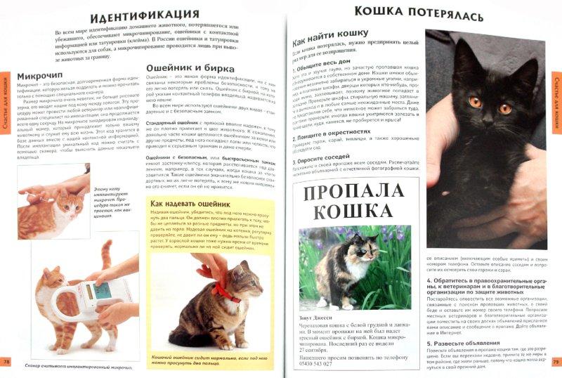 Иллюстрация 1 из 23 для Все о кошках - Ребекка Уотсон | Лабиринт - книги. Источник: Лабиринт