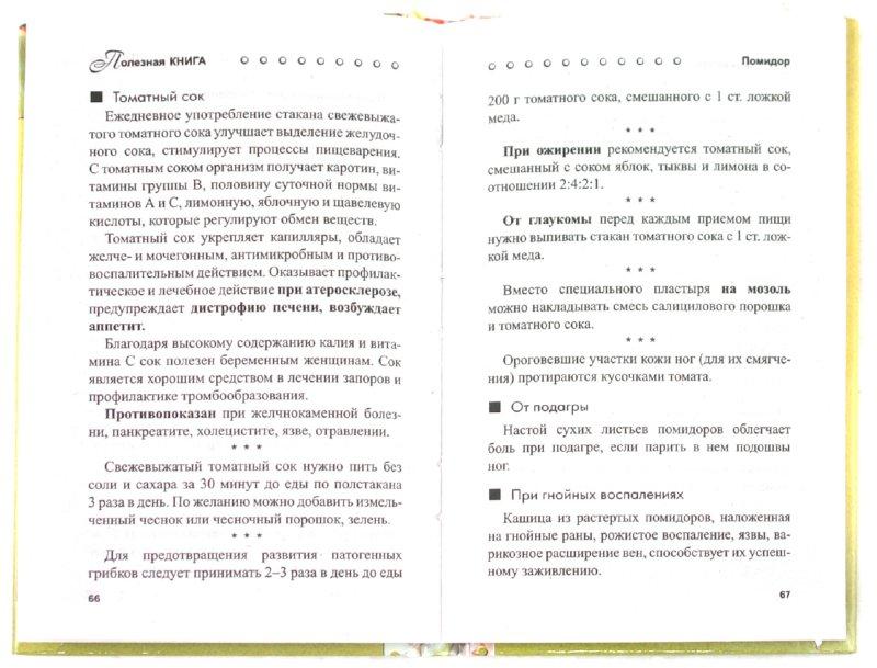 Иллюстрация 1 из 8 для Целебная грядка - Н. Кирилина   Лабиринт - книги. Источник: Лабиринт