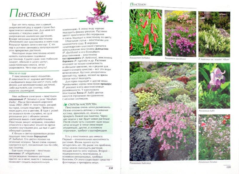 Иллюстрация 1 из 6 для Садовые цветы - Ольга Бондарева | Лабиринт - книги. Источник: Лабиринт