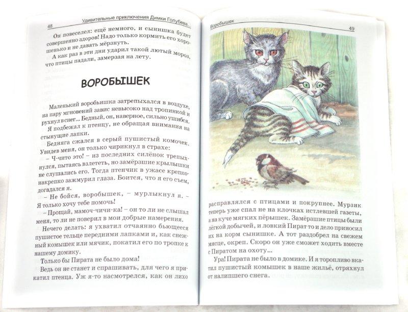 Иллюстрация 1 из 6 для Удивительные приключения Димки Голубева, которые помогли ему стать человеком - Ольга Ларькина   Лабиринт - книги. Источник: Лабиринт