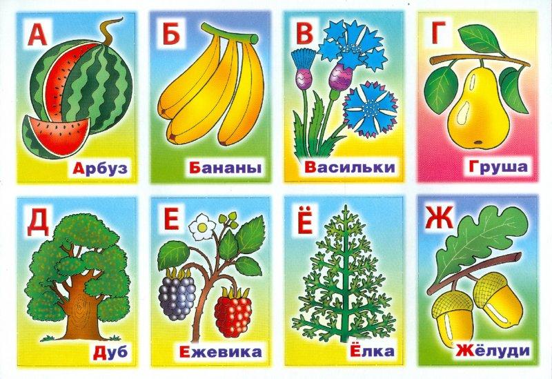 """Иллюстрация 1 из 5 для Развивающее лото """"Азбука растений"""" (06197)   Лабиринт - игрушки. Источник: Лабиринт"""