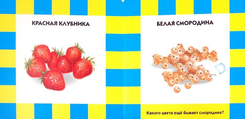 Иллюстрация 1 из 4 для Фрукты и ягоды | Лабиринт - книги. Источник: Лабиринт