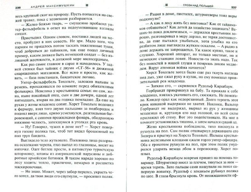 Иллюстрация 1 из 6 для Гроза над Польшей - Андрей Максимушкин | Лабиринт - книги. Источник: Лабиринт