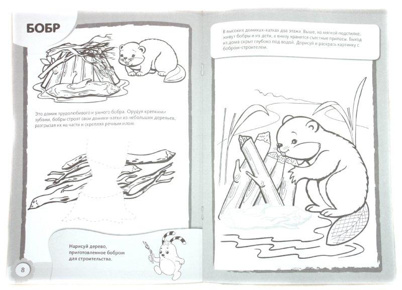 Иллюстрация 1 из 10 для Рисуем и раскрашиваем домики животных. 4+   Лабиринт - книги. Источник: Лабиринт