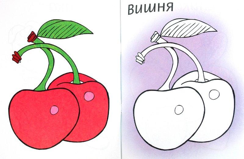 Иллюстрация 1 из 6 для Раскраска. Ягоды - Мила Бегоза   Лабиринт - книги. Источник: Лабиринт