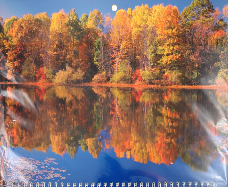 """Иллюстрация 1 из 2 для Календарь 2012 """"Осенний вид с отражением"""" (14258)   Лабиринт - сувениры. Источник: Лабиринт"""