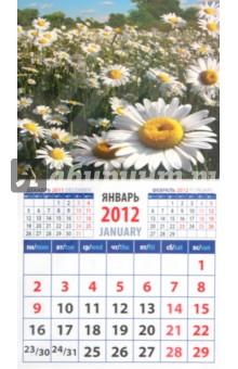"""Календарь на 2012 год. """"Ромашки"""" (20218)"""