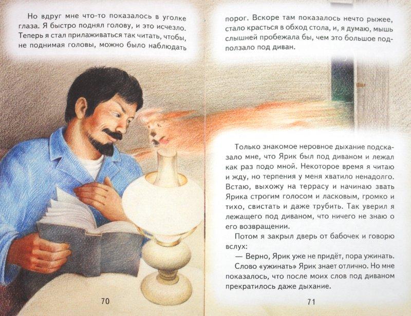 Иллюстрация 1 из 9 для Рассказы о животных - Михаил Пришвин | Лабиринт - книги. Источник: Лабиринт