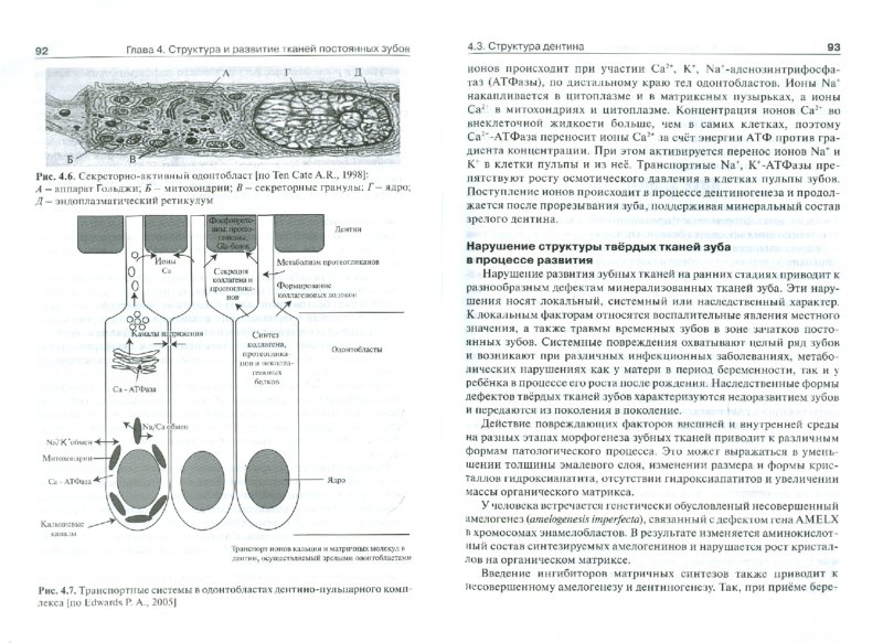 Иллюстрация 1 из 10 для Биохимия тканей и жидкостей полости рта. Учебное пособие - Татьяна Вавилова | Лабиринт - книги. Источник: Лабиринт