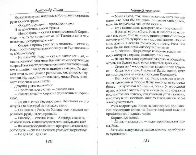 Иллюстрация 1 из 8 для Черный тюльпан - Александр Дюма   Лабиринт - книги. Источник: Лабиринт
