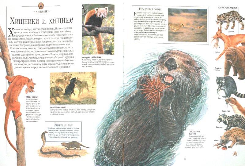 Иллюстрация 1 из 8 для Моя первая энциклопедия | Лабиринт - книги. Источник: Лабиринт