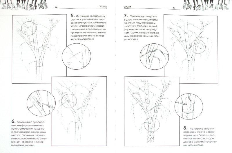 Иллюстрация 1 из 16 для Рисуем растения - Валентина Пенова | Лабиринт - книги. Источник: Лабиринт