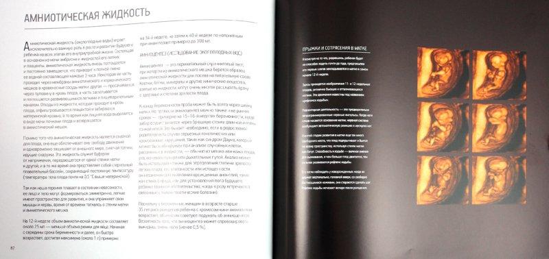 Иллюстрация 1 из 13 для Жизнь до рождения - Питер Таллак | Лабиринт - книги. Источник: Лабиринт