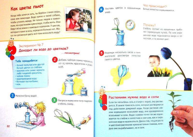 Иллюстрация 1 из 4 для Веселые эксперименты для детей. Биология - Анита Саан | Лабиринт - книги. Источник: Лабиринт