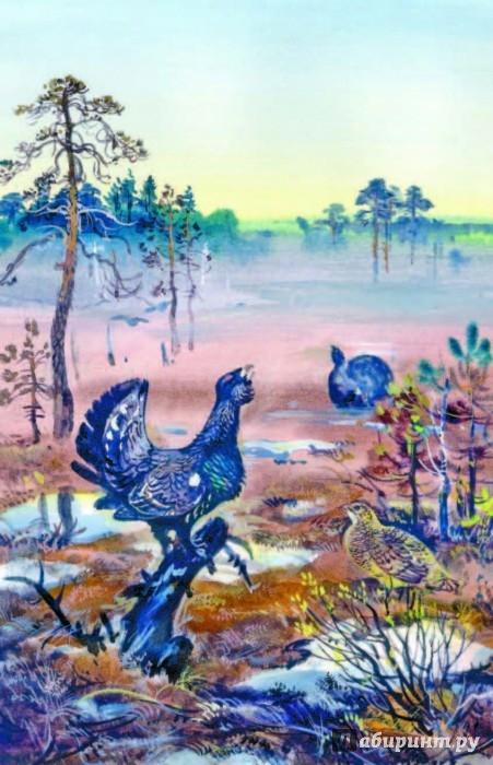 Иллюстрация 1 из 21 для Русский лес - Иван Соколов-Микитов   Лабиринт - книги. Источник: Лабиринт