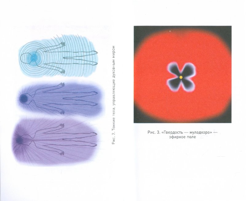 Иллюстрация 1 из 18 для Учебник по экстрасенсорике. Советы от практикующей ведуньи - Элина Болтенко   Лабиринт - книги. Источник: Лабиринт