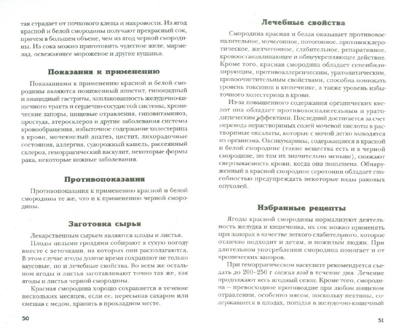 Иллюстрация 1 из 12 для Лечимся ягодами - Евгений Щадилов   Лабиринт - книги. Источник: Лабиринт