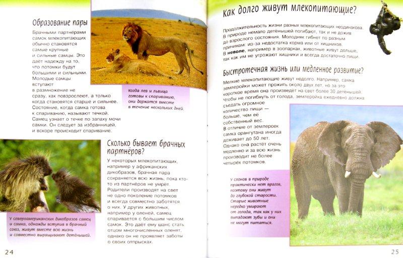 Иллюстрация 1 из 10 для Жизненный цикл млекопитающих - Майк Ануин | Лабиринт - книги. Источник: Лабиринт