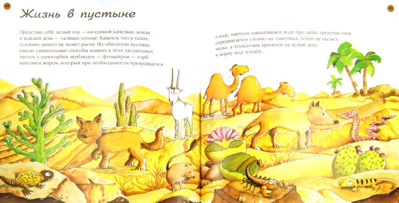 Иллюстрация 1 из 33 для Земля - Нурия Рока | Лабиринт - книги. Источник: Лабиринт