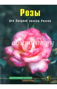 Розы средней полосы