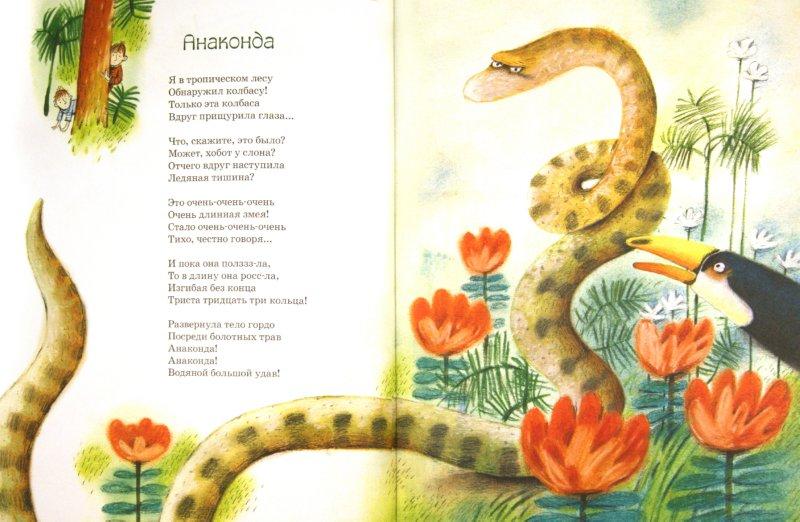 Иллюстрация 1 из 29 для Южная Америка от берега до берега - Анна Воронова | Лабиринт - книги. Источник: Лабиринт