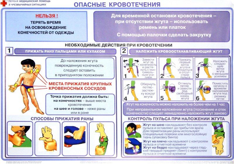 Иллюстрация 1 из 3 для Первая медицинская помощь в чрезвычайных ситуациях (12 плакатов) - Бубнов, Бубнова | Лабиринт - книги. Источник: Лабиринт