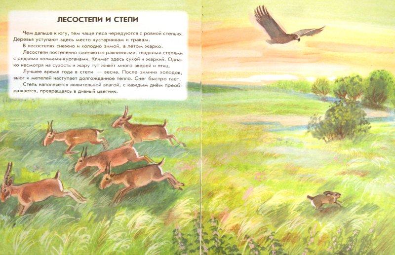Иллюстрация 1 из 41 для Азбука живой природы - Александр Барков | Лабиринт - книги. Источник: Лабиринт