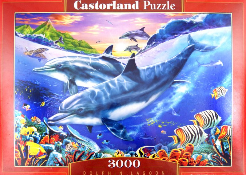 Иллюстрация 1 из 16 для Лагуна дельфинов, 3000 деталей (C-300259-М) | Лабиринт - игрушки. Источник: Лабиринт