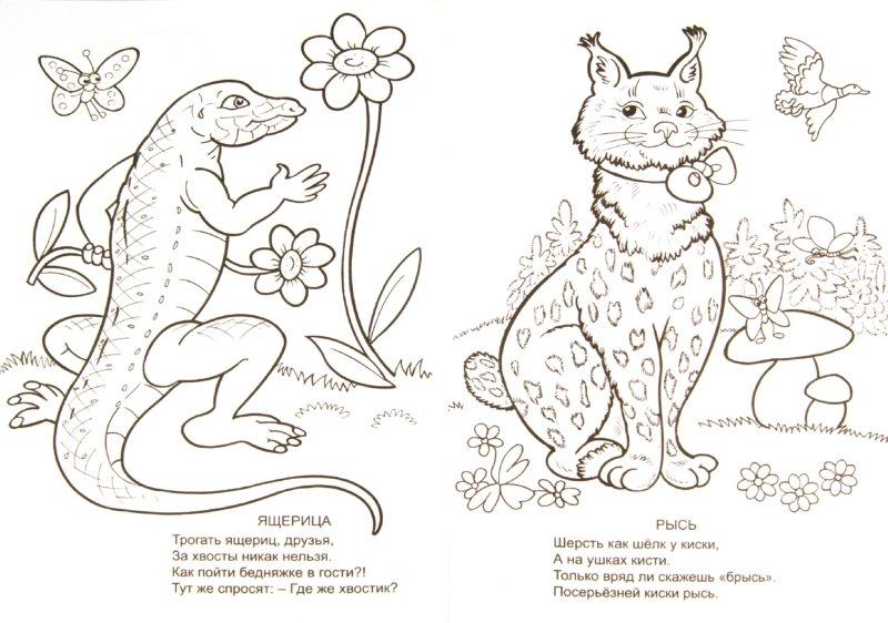 Иллюстрация 1 из 11 для Эти милые зверушки. Раскраска - Елена Михайленко | Лабиринт - книги. Источник: Лабиринт