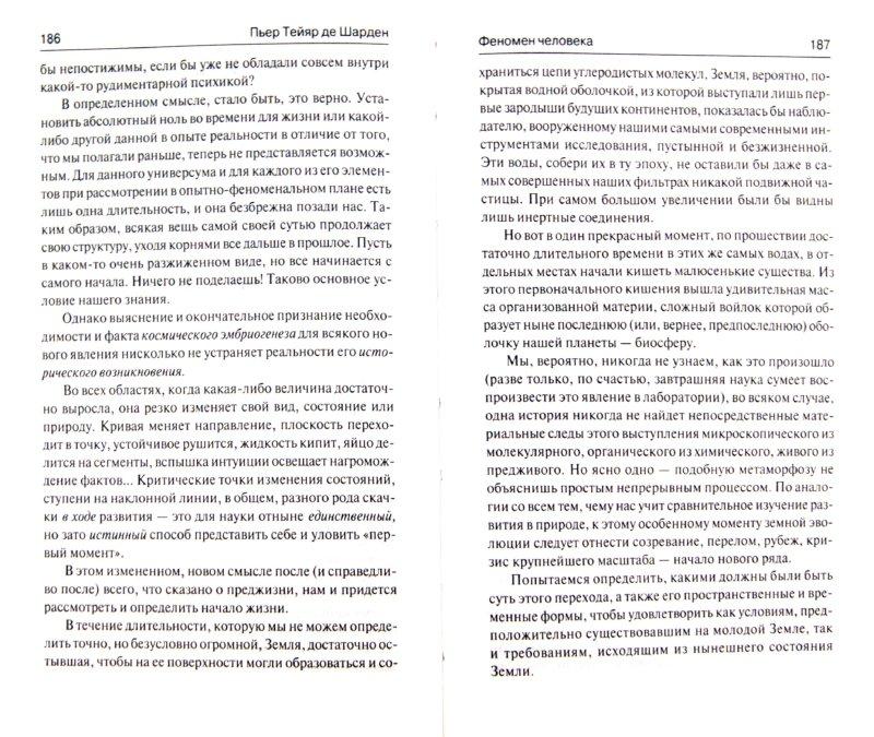 Иллюстрация 1 из 7 для Феномен человека. Божественная среда - Тейяр де Шарден   Лабиринт - книги. Источник: Лабиринт