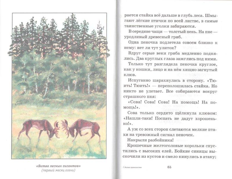 Иллюстрация 1 из 12 для Лесные происшествия - Виталий Бианки | Лабиринт - книги. Источник: Лабиринт