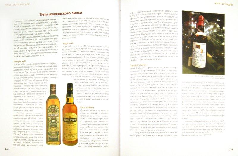 Иллюстрация 1 из 2 для Виски. Путеводитель - Эркин Тузмухамедов | Лабиринт - книги. Источник: Лабиринт