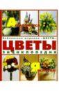 Цветы от Агапантуса до Яснотки: Энциклопедия
