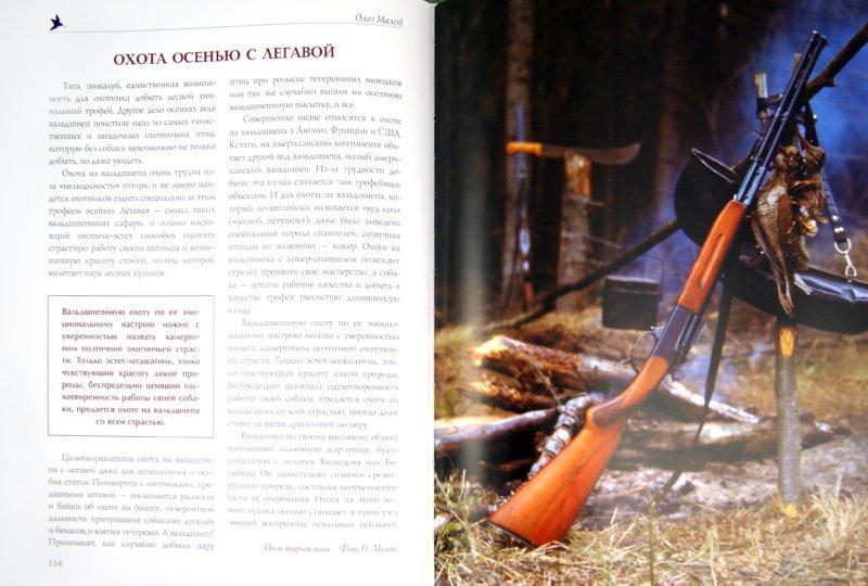 Иллюстрация 1 из 30 для Охота на боровую дичь - Олег Малов | Лабиринт - книги. Источник: Лабиринт