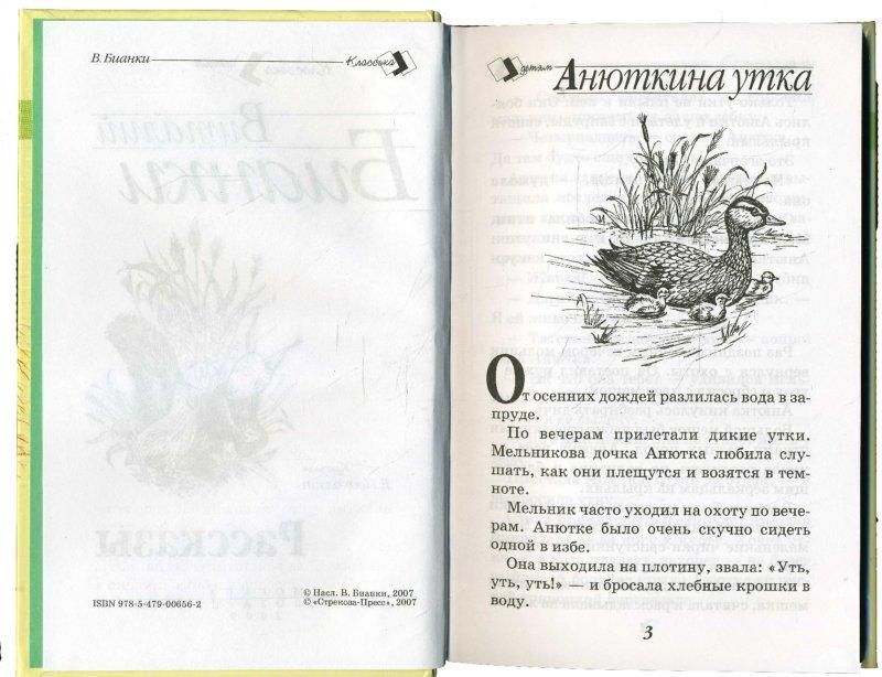Иллюстрация 1 из 11 для Рассказы - Виталий Бианки | Лабиринт - книги. Источник: Лабиринт
