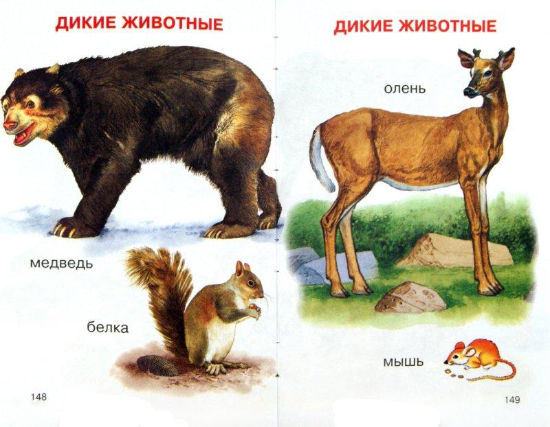 Иллюстрация 1 из 15 для Первая книга малыша - Елена Чайка   Лабиринт - книги. Источник: Лабиринт